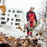 Kollege mit Laubbläser bei der Reingung von Außenanlagen wie Gehwegen & Zugängen