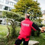 Teamkollege von Gebäudereinigung Stuttgart beim Hecke schneiden und Grünanlagenpflege