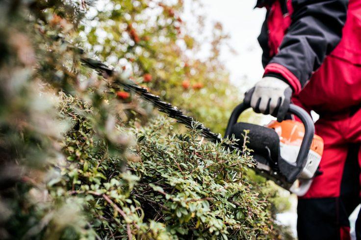 Grünanlagenpflege Stuttgart beim Heckenschneiden