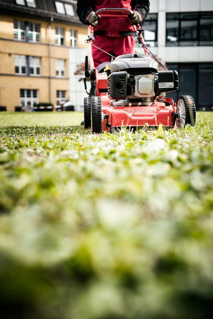 Grünanlagen Pflege, Rasenmähen und Gebäudedienste, Winterdienst Stuttgart